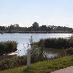 regiodag-west-2016-92
