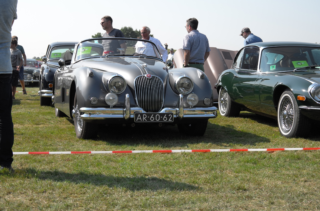 Wings & Wheels 2015 (6)